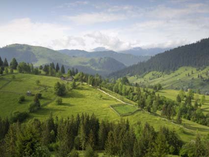 Carpathian Mountains North of Campulung Moldovenesc, Moldavia, Southern Bucovina, Romania, Europe