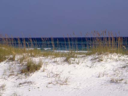 Beach on Gulf of Mexico, Al