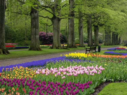 Keukenhof Gardens, Lisse, Netherlands, Holland