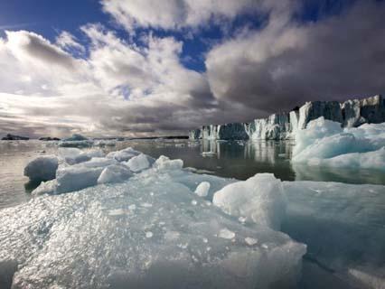 Icebergs Near Sveabreen Glacier in Nordfjorden