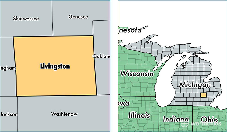 location of Livingston county on a map