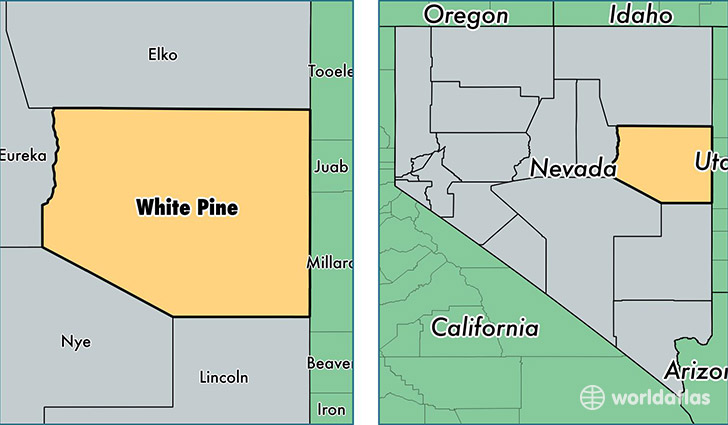 location of White Pine county on a map