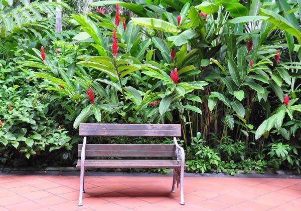 raffles hotel bench