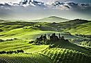 'Rolling Hills and Vast Vistas in Tuscany, Italy' from the web at 'http://worldatlas.com/r/w120/upload/c0/53/e8/tuscany.jpg'