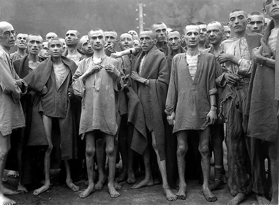 an analysis of the concept of starvation and the mass murder in the nazi germany