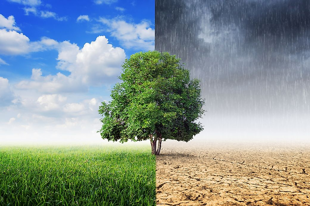 the reality and effects of climate change on everyone in the world