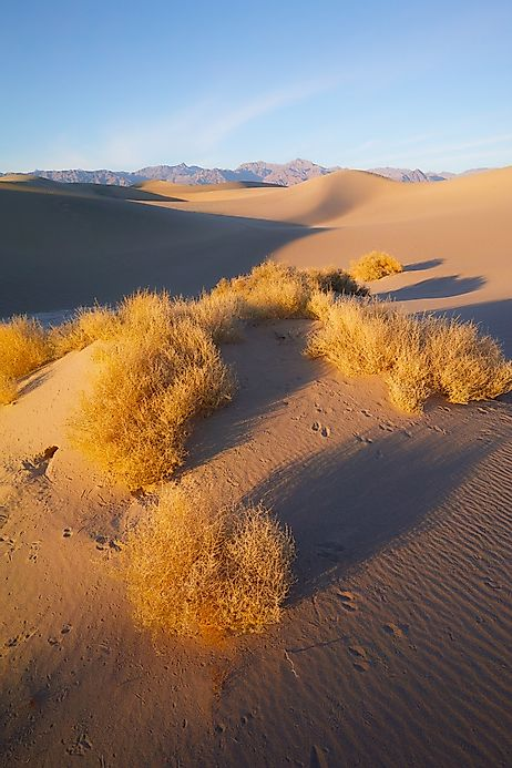 where does the great basin desert lie
