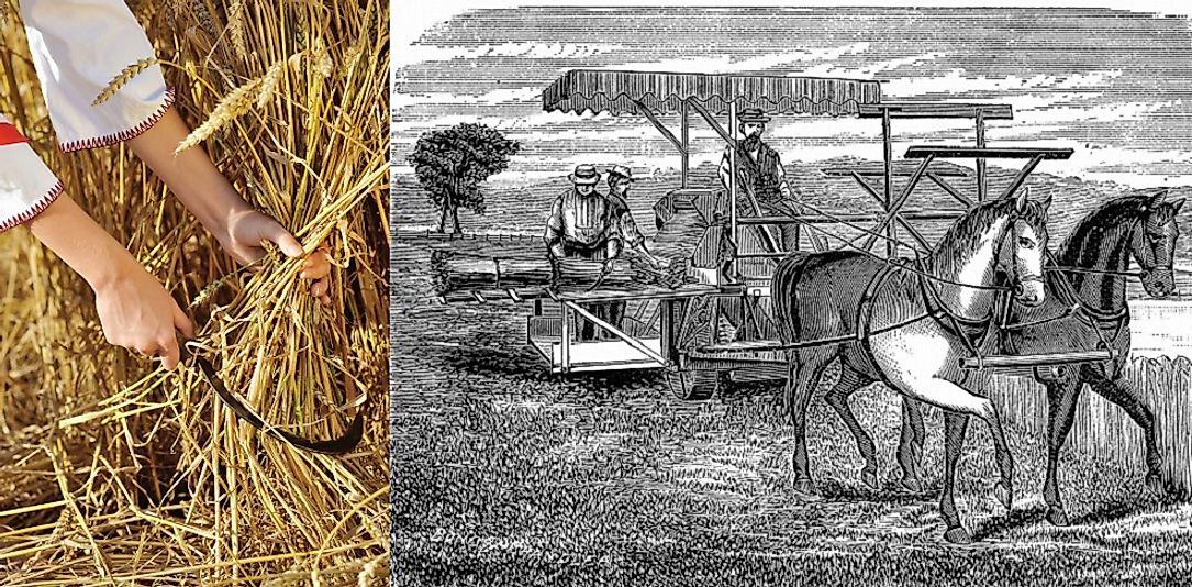 agricultural revolution world domination