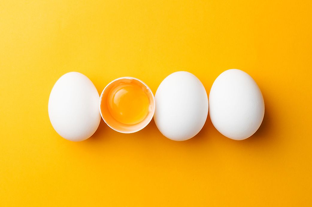 Top Egg Producing Countries In The World - WorldAtlas com
