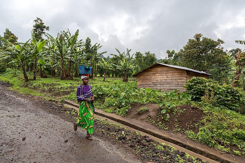 The Culture Of The Democratic Republic of the Congo ...