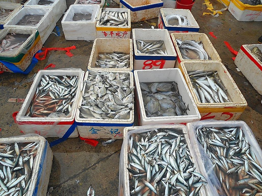 Leading Countries In Fishing  And Aquaculture Harvests