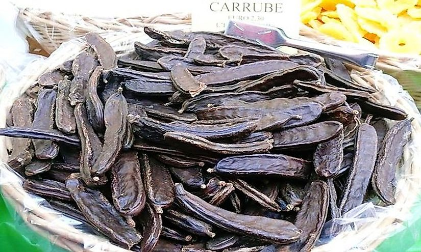 Top Carob Producing Nations In The World