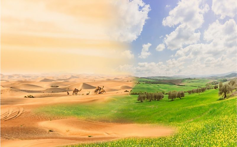 Climate Change Induced Desertification: Is It Irreversible?