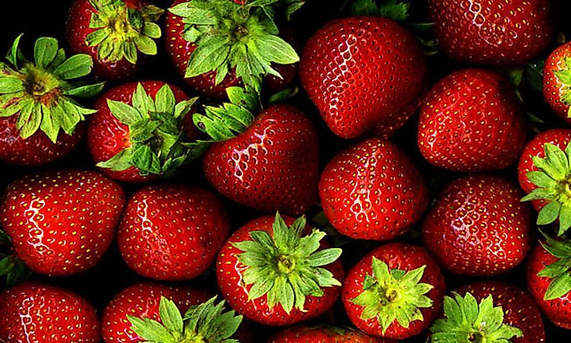 Countries That Produce the Most Strawberries