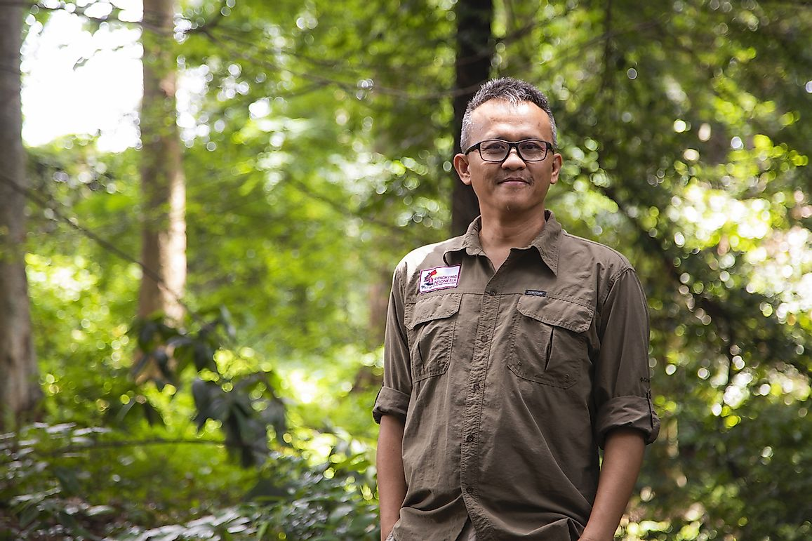 The Story Of An Indonesian Conservationist And His Battle To Save A Vanishing Hornbill