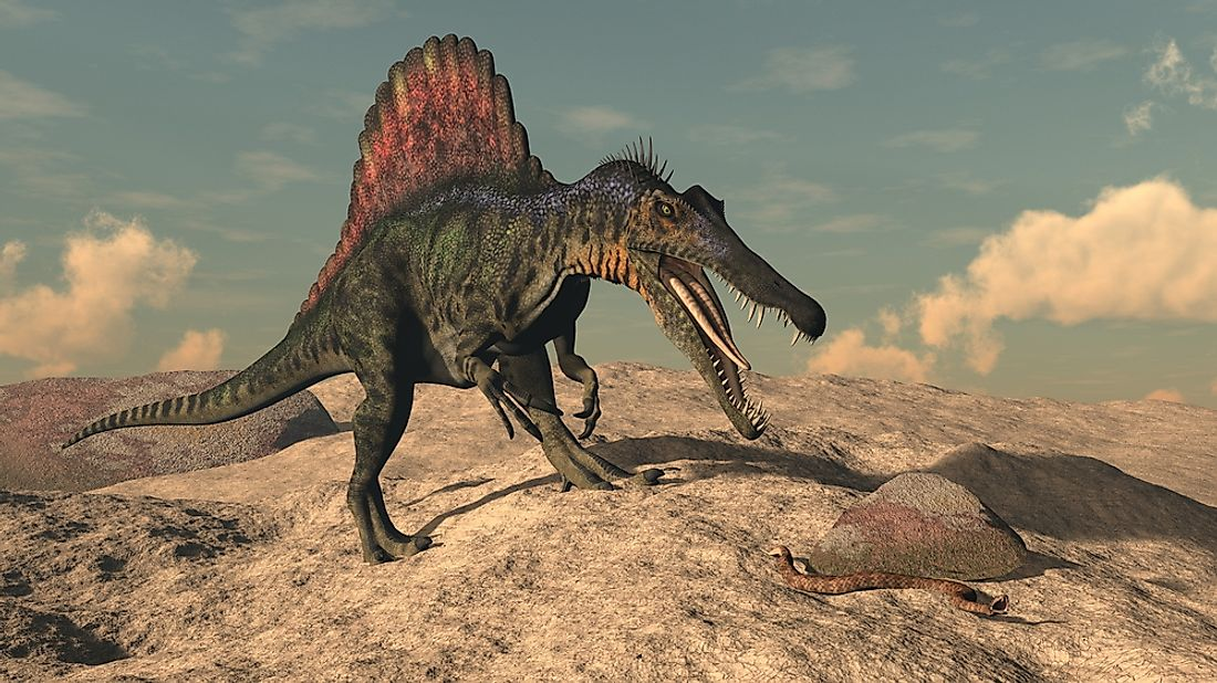 Spinosaurus Facts: Extinct Animals of the World