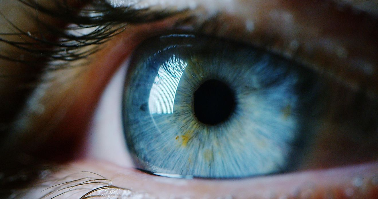 12 Fascinating Things That Are Actually Invisible To The Human Eye