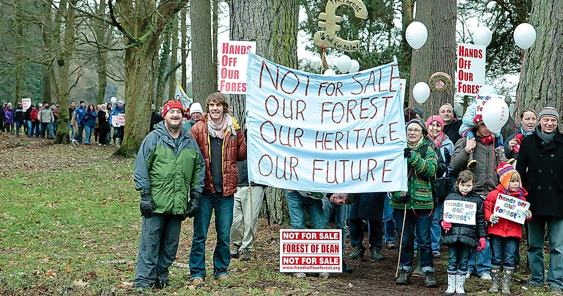 "What Happened During The ""Hands off Our Forest"" Campaign In The UK?"
