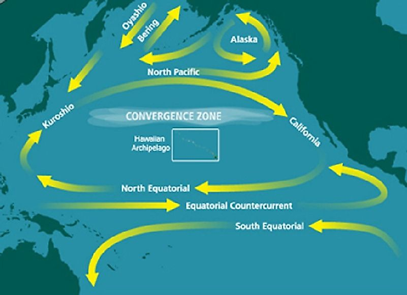 The Great Pacific Garbage Vortex