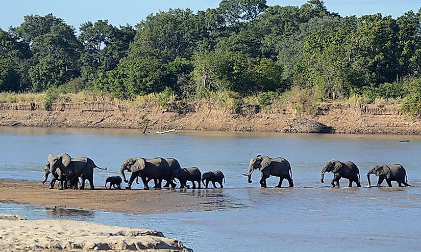 Zambia's Top National Parks