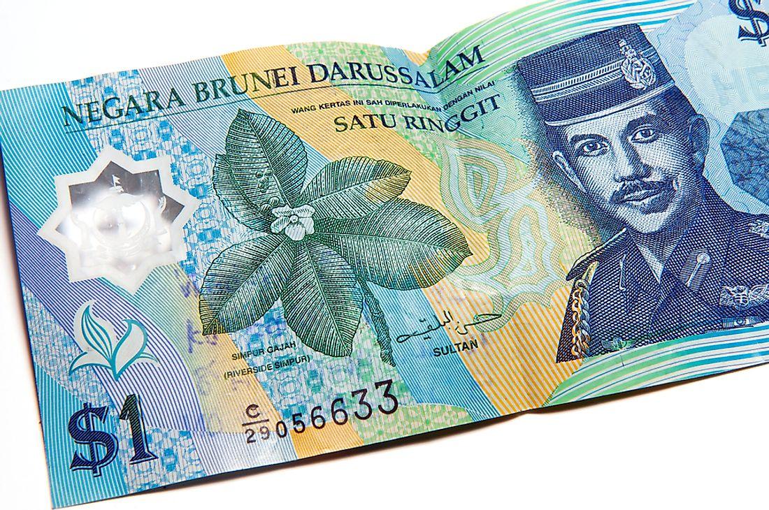 Forex trading brunei