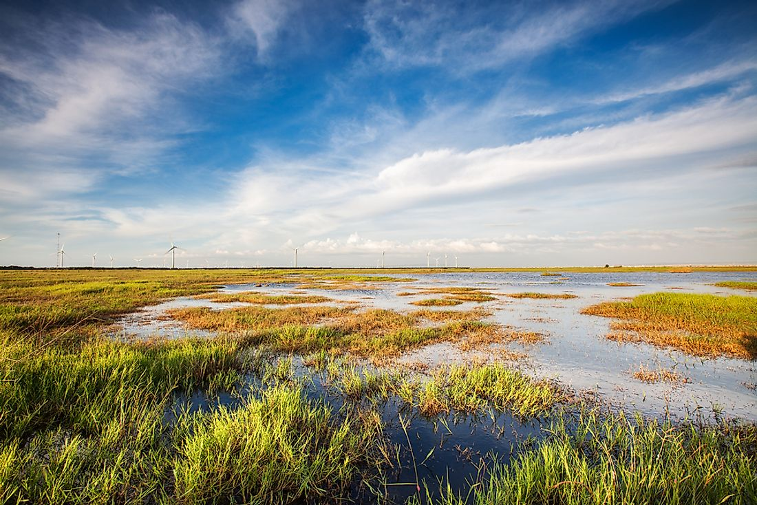 Why Is It Important To Protect Wetlands?