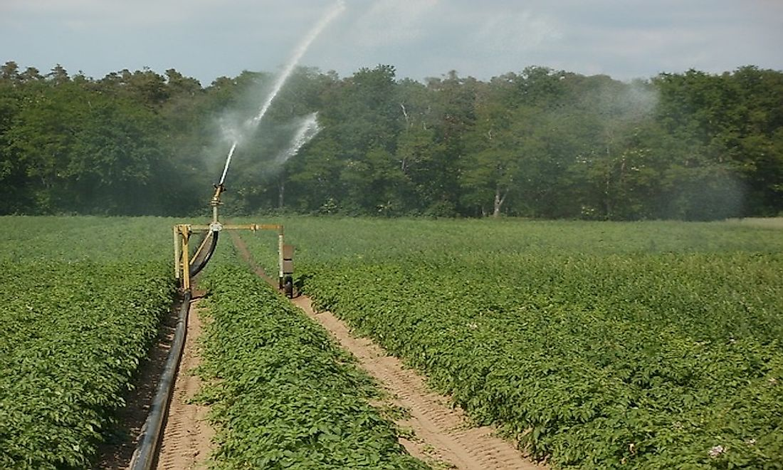 What Is The Environmental Impact Of Irrigation?