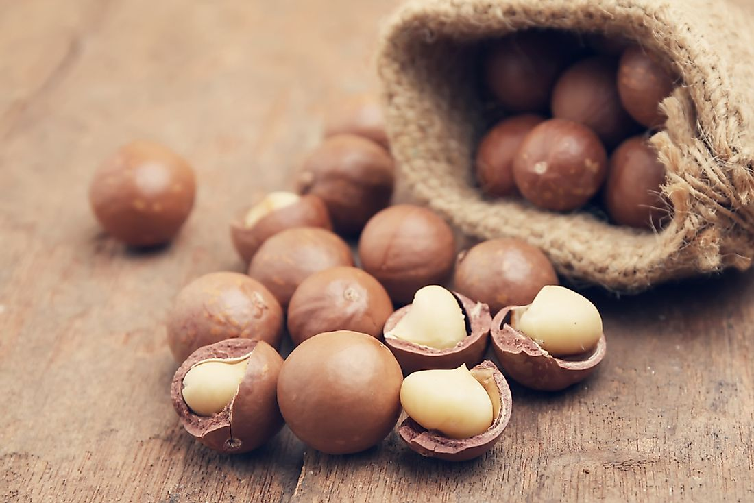Top Macadamia Consuming Countries