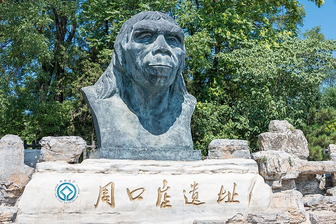 What Is Peking Man?