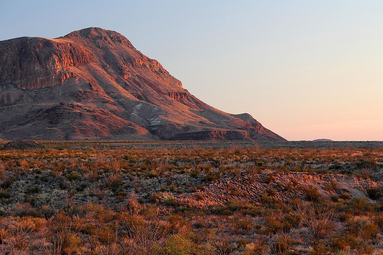 Do Humans Live In The Chihuahuan Desert?