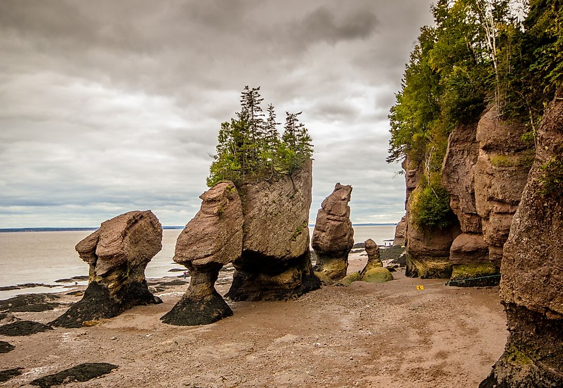 What and Where Are The Hopewell Rocks?