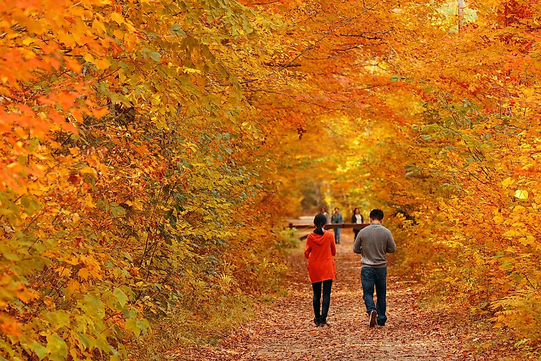 People walk through the autumn leaves in Vermont.