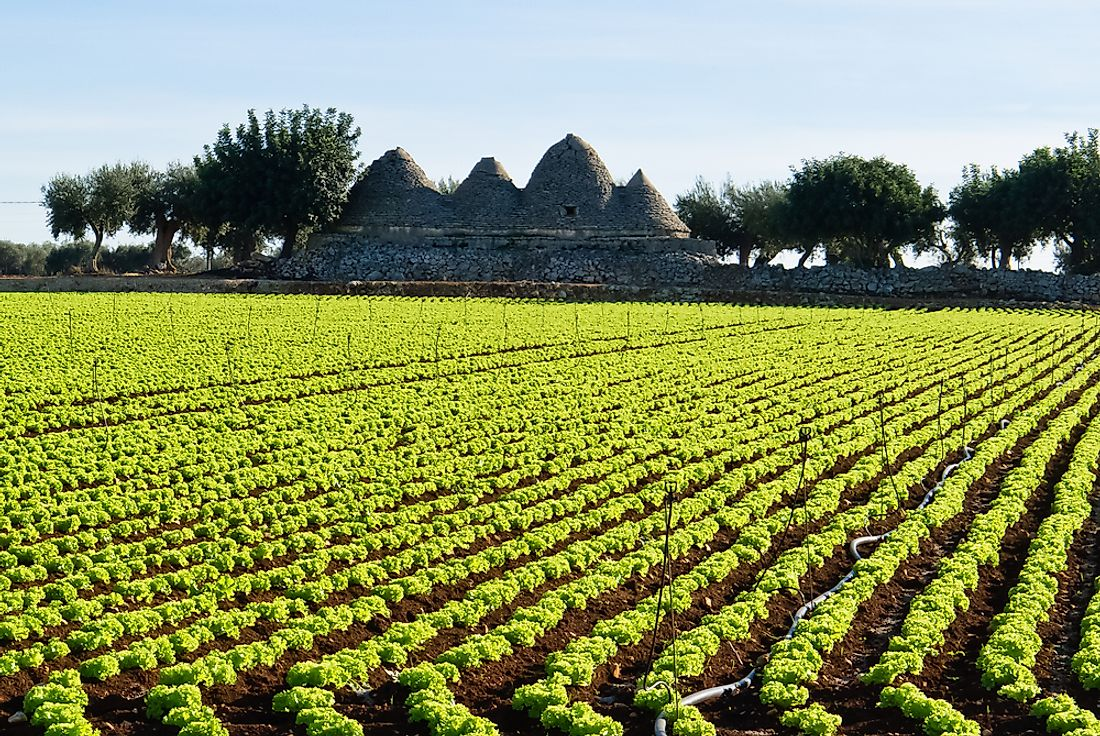 Organic farming is popular in Spain.