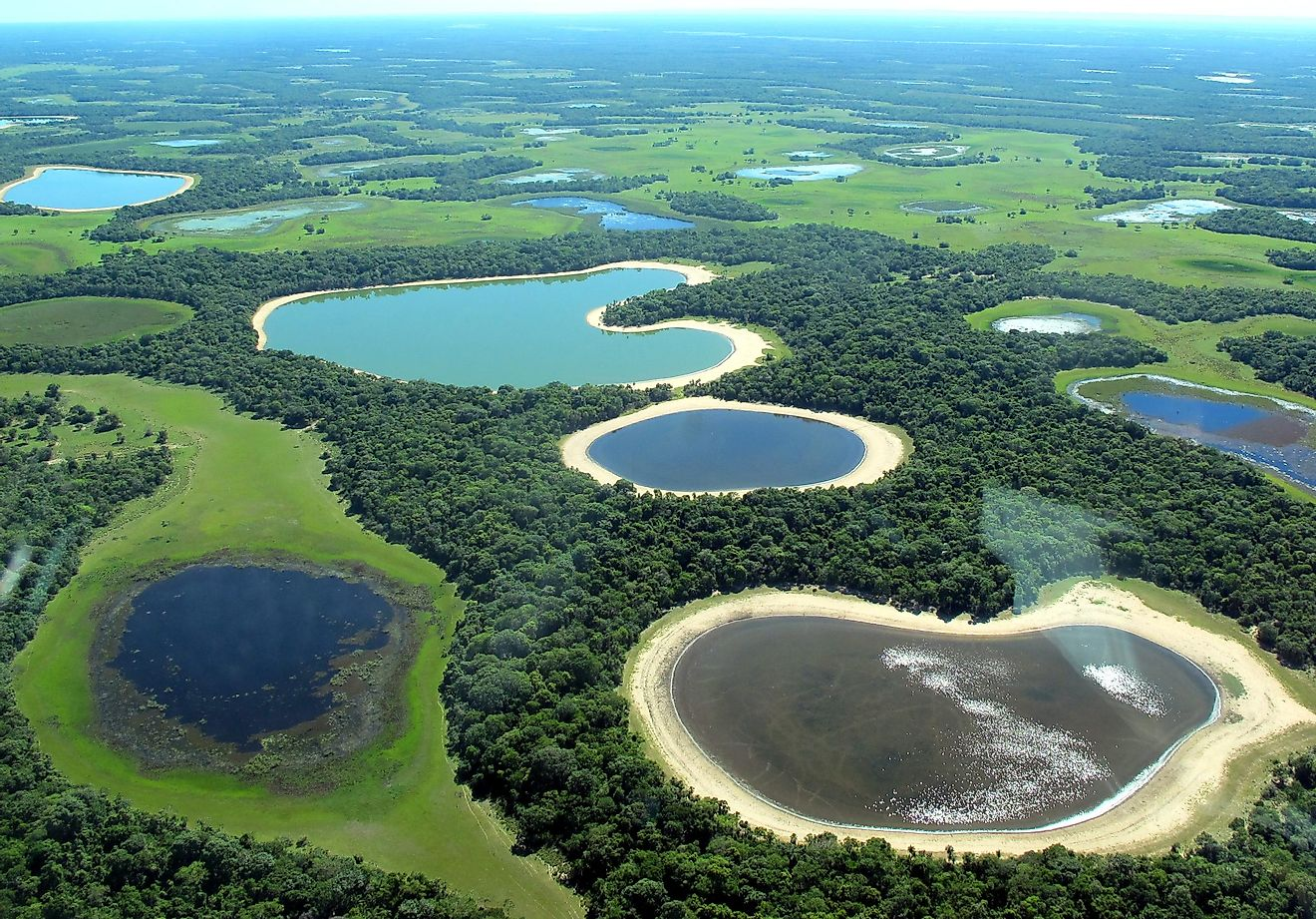 Lakes in the Pantanal region of Brazil, the country with the 6th highest number of lakes in the world. Image credit: Lucas Leuzinger/Shutterstock.com