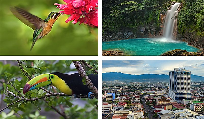 A collage of some of the most notable sights and sounds of Costa Rica.