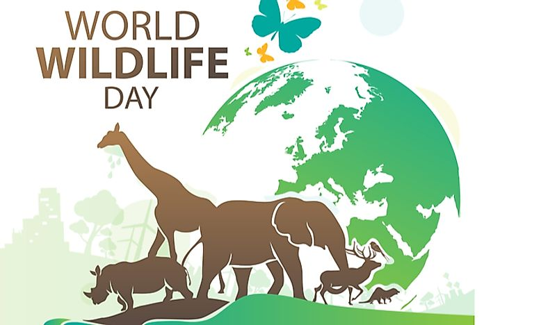 World Wildlife Day was celebrated on March 3rd.