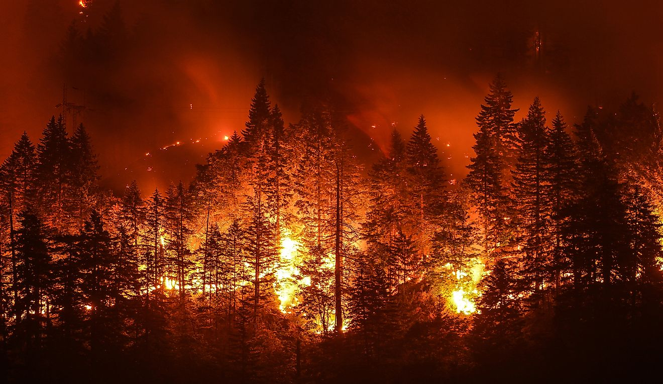 Eagle Creek Wildfire in Columbia River Gorge.