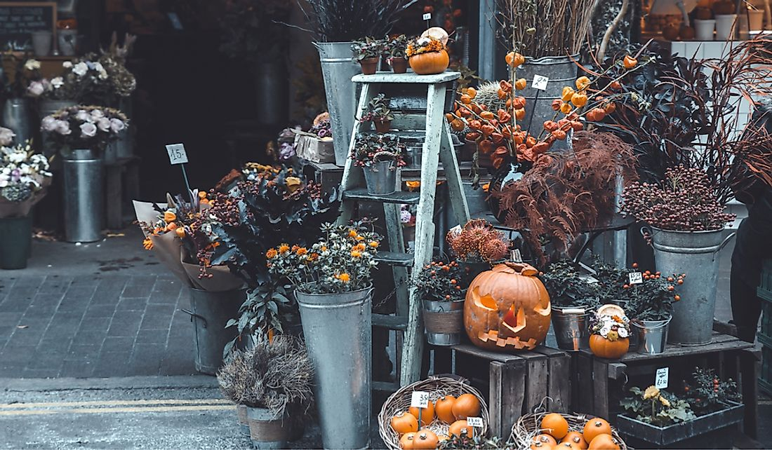 Pumpkins and fall flowers for sale in London, England.