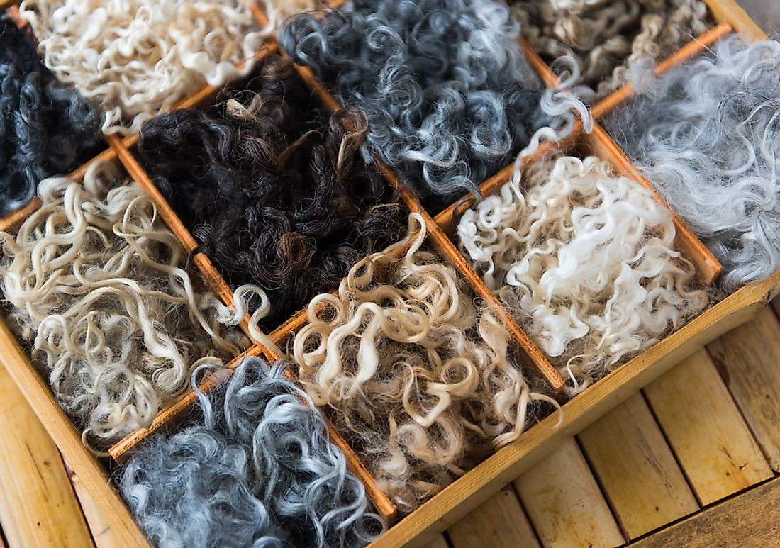 An assortment of sheep wool.