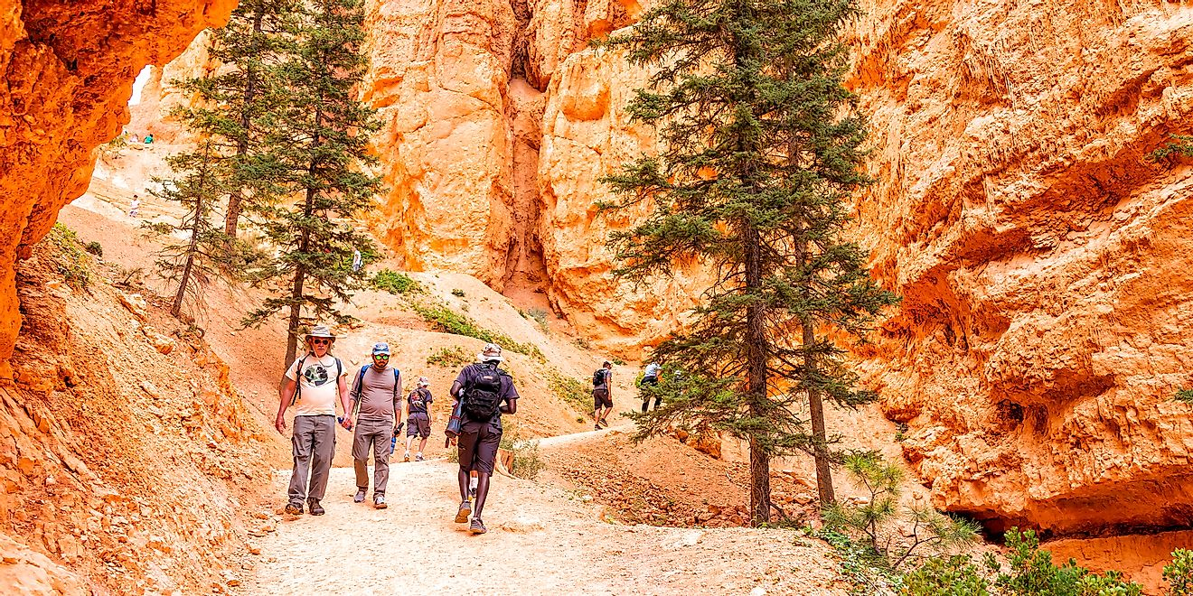 People walking on orange colorful Queens Garden Navajo Loop trail at Bryce Canyon National Park in Utah. - Kristi Blokhin / Shutterstock.com