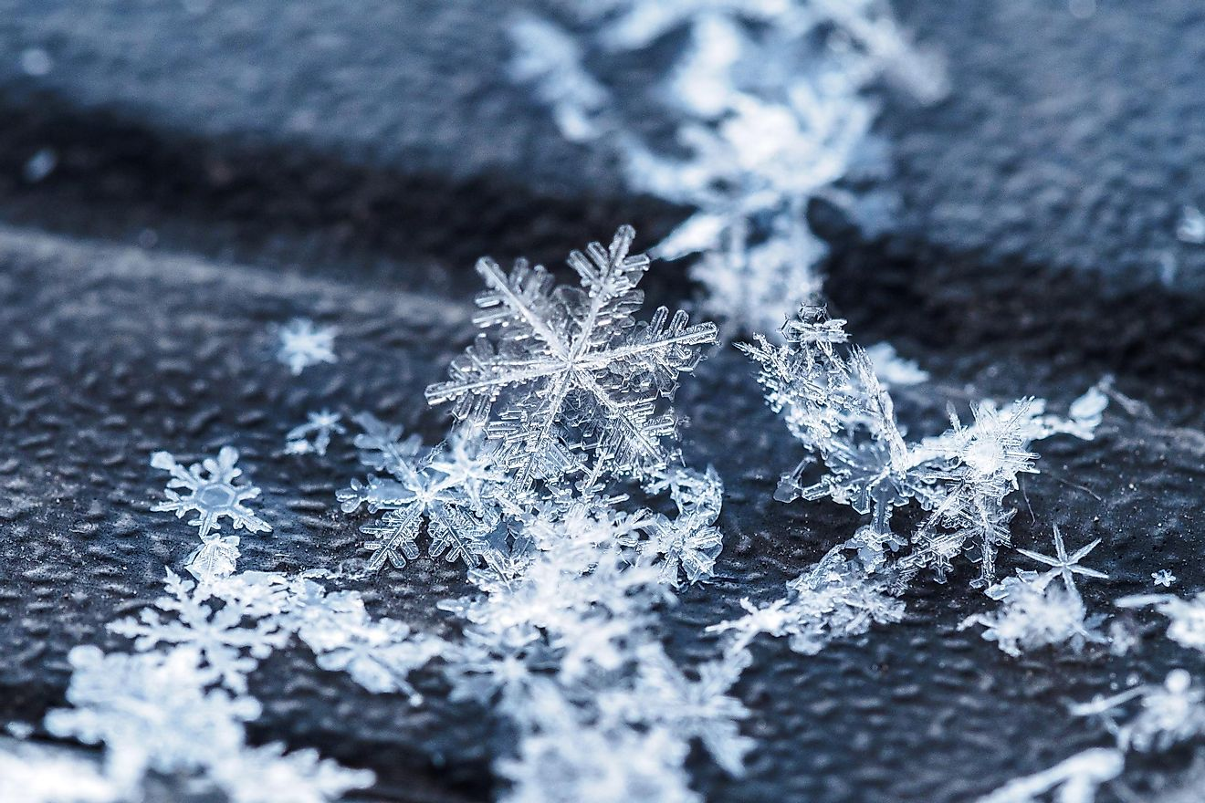 Snowflakes up close.