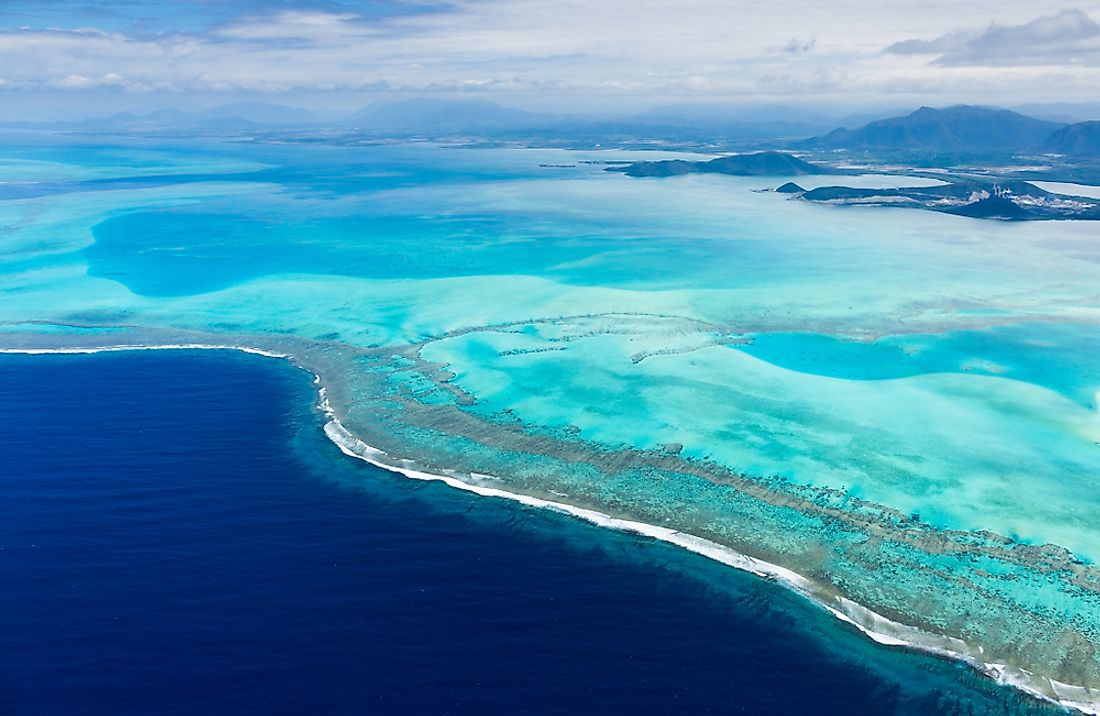 New Caledonia is one of the most important biodiverse hot spots in the region.