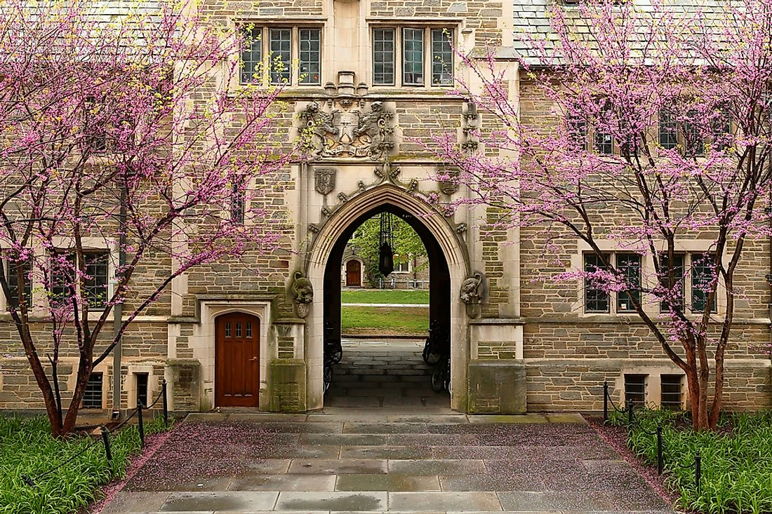 The campus of Princeton.