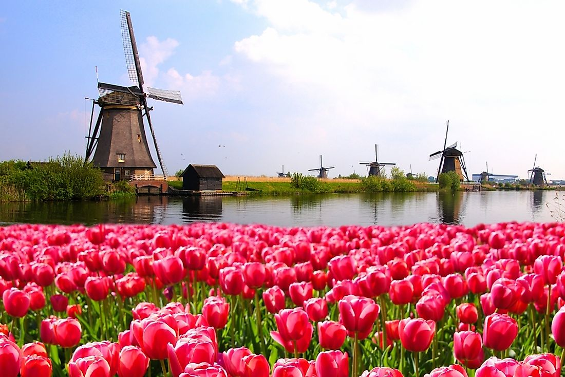 The Netherlands is a small country located in Western Europe.