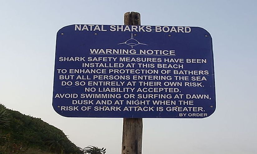 A warning at a South African beach alerting surfers and swimmers about shark attacks.