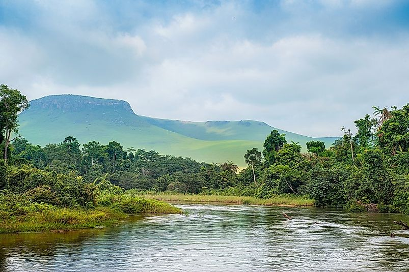 Tropical vegetation along the Congo River in the Democratic Republic of the Congo.
