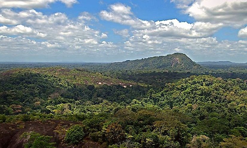 View from the Voltzberg in the Central Suriname Nature Reserve