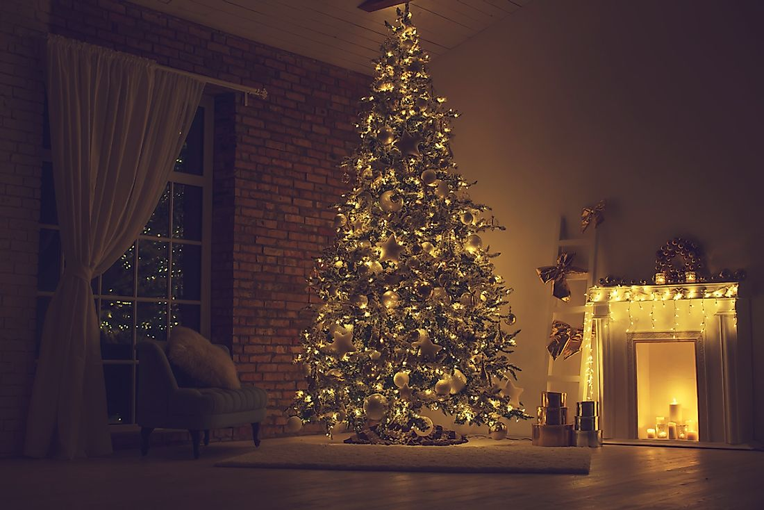 Pine or Fir trees are usually brought into the home and decorated during the Christmas season.