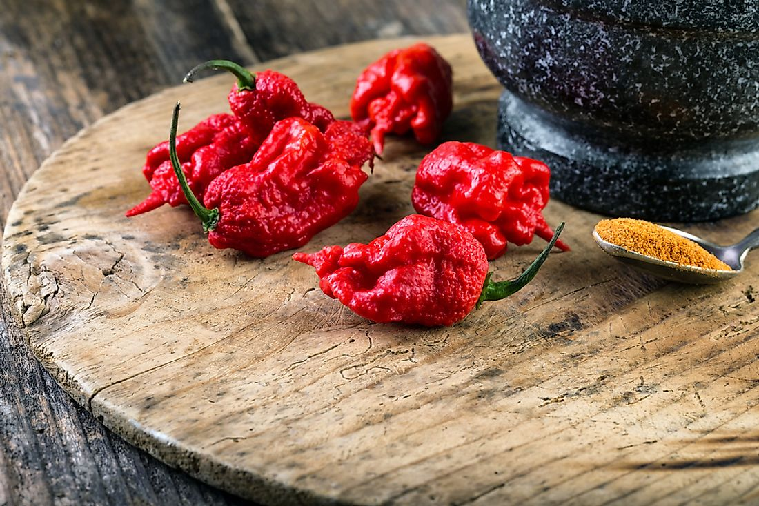The Carolina Reaper is one of the world's hottest chilies.