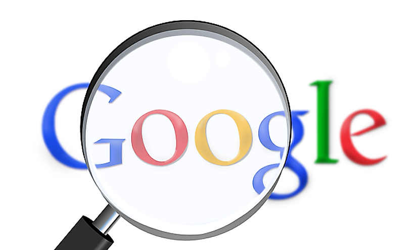 Google is the second largest internet company whose main activity is internet search engine operation.